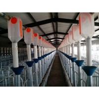 桂林猪自动料线定制加工/开元畜牧售后完善质优价廉