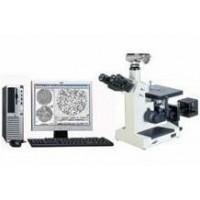 金相球化率分析仪,金相组织分析仪,铸铁金相分析仪
